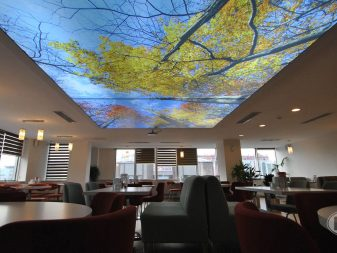heaven 3d interiors ceilings stretch